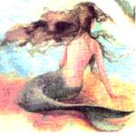 petite sirène 5
